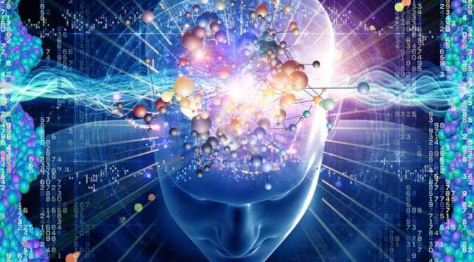 Mente y cerebro en la vida humana